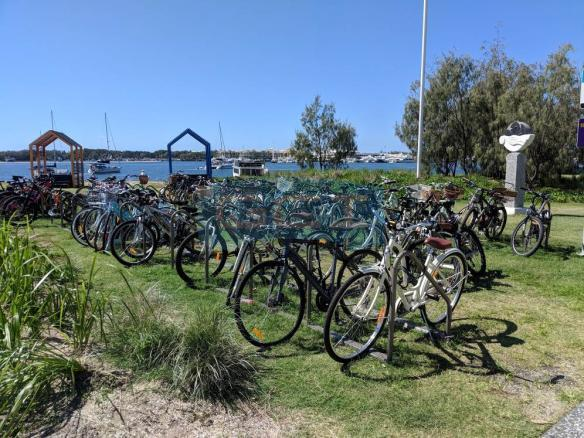 Southport Broadwater Parklands 50+ bikes